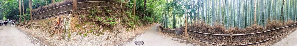 京都- 2016年5月30日:游人在竹森林公园 京都是a 图库摄影