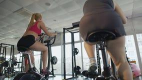 亭亭玉立的夫人和超重女性骑马锻炼脚踏车在健身房,竞争 股票录像