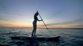 亭亭玉立的夫人横跨在她的paddleboard的开阔水域航行 夏天乐趣行动体育 股票视频