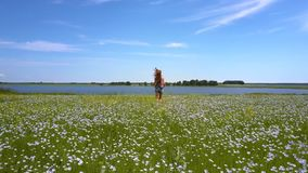 亭亭玉立的女孩在荞麦领域跑到遥远的湖 股票录像