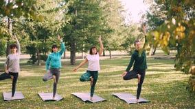 亭亭玉立的少妇做着树姿势的变异在瑜伽类期间户外在放松和享受自然的公园和 股票视频