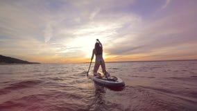 亭亭玉立的少妇横跨海paddleboarding 活跃假期概念 股票录像