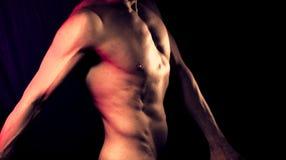 亭亭玉立的男性裸体人 图库摄影