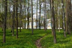 亭子在凯瑟琳` s公园在Tsarskoe Selo通过森林 免版税图库摄影