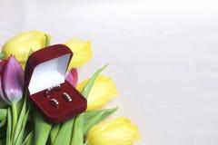亲人的礼物 黄色和桃红色郁金香花束驱散轻的表面上 附近一个开放天鹅绒箱子红色col 免版税库存照片
