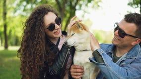 亲吻和爱抚讨人喜欢的狗的快乐的人民的慢动作接触它的毛皮,当动物享受爱和关心时 影视素材