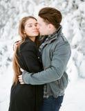 亲吻在冬天公园的年轻夫妇 户外系列 图库摄影