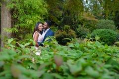 亲吻在绿色灌木之间的树下的一对热情的夫妇 免版税库存照片