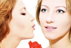 亲吻孪生 免版税图库摄影