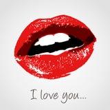 亲吻爱 向量例证
