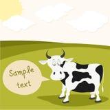 亲爱的母牛在草甸 免版税库存照片