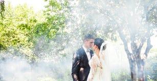 亲吻反对一个有薄雾的庭院的背景的婚礼夫妇 库存照片