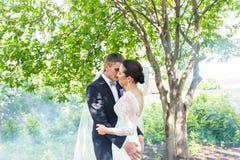 亲吻反对一个有薄雾的庭院的背景的婚礼夫妇 免版税库存照片