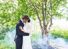 亲吻反对一个有薄雾的庭院的背景的婚礼夫妇 库存图片