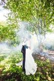 亲吻反对一个有薄雾的庭院的背景的婚礼夫妇 免版税库存图片