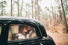 亲吻和拥抱在杉木森林里的浪漫童话婚礼夫妇在减速火箭的汽车附近 免版税库存照片