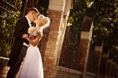 亲吻在公园的新娘和新郎 免版税图库摄影