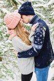 亲吻在冷杉木中的多雪的森林里的可爱的夫妇 图库摄影