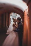 亲吻在古老隧道的新娘和新郎特写镜头画象由砖做成 图库摄影