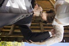 新娘和新郎亲吻 库存图片