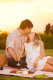 亲吻在浪漫野餐的有吸引力的夫妇 库存图片