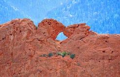 亲吻在神科罗拉多泉砂岩的庭院的骆驼 免版税库存照片