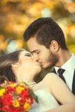 亲吻在被弄脏的秋天背景的已婚夫妇 免版税库存照片