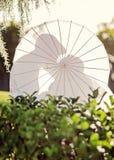 亲吻在遮阳伞后的婚礼夫妇 库存图片