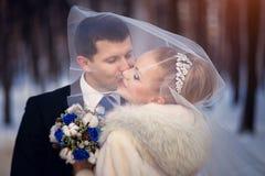 亲吻在面纱下的新娘和新郎 婚礼照相讲席会在户外冬天 库存照片