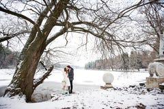 亲吻新娘和新郎在冬天风景 免版税库存图片