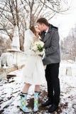 亲吻新娘和新郎在冬天风景 库存照片