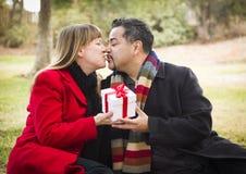 亲吻混合的族种夫妇给圣诞节或情人节礼物 免版税图库摄影