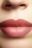 亲吻甜点 完善的自然嘴唇构成 关闭与美丽的女性嘴的宏观照片 肥满充分的嘴唇 免版税库存照片