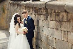 亲吻美丽的深色的新娘的英俊的浪漫新郎在ol附近 免版税库存图片