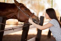 亲吻马的逗人喜爱的女孩 免版税图库摄影