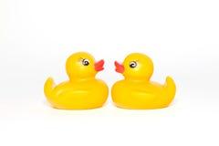 亲吻鸭子 免版税图库摄影