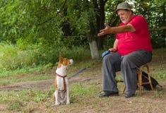 人与他的四腿朋友(basenji狗)谈话坐一把凳子在夏天公园 免版税库存图片