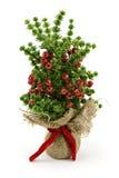 人为圣诞节装饰结构树 免版税库存照片