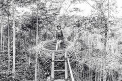 人为巢的少妇在热带巴厘岛,印度尼西亚雨林  免版税图库摄影