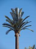 人为棕榈树 免版税库存照片