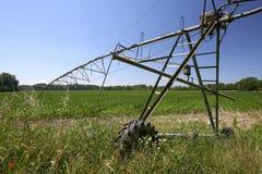 人为灌溉 图库摄影