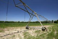 人为灌溉 免版税库存图片