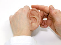 人为硅树脂做了人的耳朵 免版税库存照片