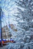 人为积雪的冷杉木在城市马赛 用雪报道的杉树分支,关闭 锋利的霜 免版税图库摄影