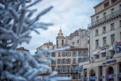 人为积雪的冷杉木在城市马赛 用雪报道的杉树分支,关闭 锋利的霜 免版税库存图片