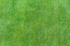人为草皮领域表面 库存图片