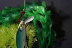 人为诱剂做了金属或塑料叮咬在油煎的鱼的人为诱饵 免版税库存照片
