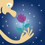 人举行一朵花在他的手上和在晚上吸入它的芬芳在星下 免版税库存照片