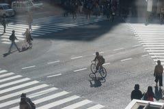人乘驾剪影横跨街道的自行车 免版税库存图片
