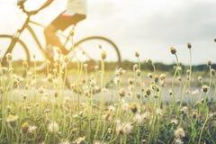 人乘驾自行车在与日落的晚上 免版税库存照片